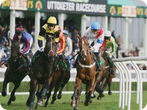 Uttoxeter-racecourse1_350x262
